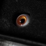 ED #04, 12mm